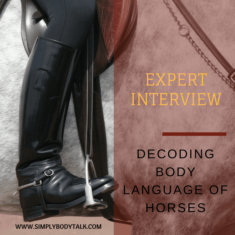 body-language-of-horses